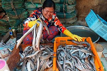 Woman sorting through fresh catch of fish, Vung Tau fish market, Vietnam, Indochina, Southeast Asia, Asia