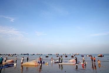 Fishing boats and women sorting fishing catch, Vung Tau Beach, Vietnam, Indochina, Southeast Asia, Asia