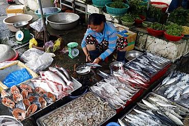 Kon Tum market, woman selling fish, Vietnam, Indochina, Southeast Asia, Asia