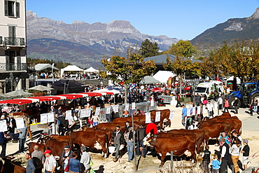 The agricultural fair (Comice Agricole) of Saint-Gervais-les-Bains, Haute-Savoie, France, Europe