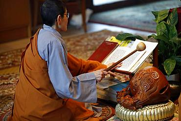 Monk at Buddhist ceremony, playing on a wooden fish (percussion instrument), Chua Tu An Buddhist temple, Haute Savoie, France, Europe