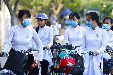 Students dressed in Ao Dai on the way to school, Cai Be, Vietnam, Indochina, Southeast Asia, Asia