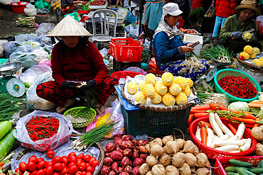 Woman selling fresh vegatables at market, Quy Nhon, Vietnam, Indochina, Southeast Asia, Asia
