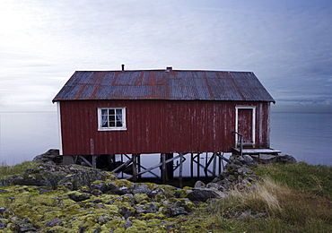 Isolated Rorbu, Lofoten Islands, Norway, Scandinavia, Europe