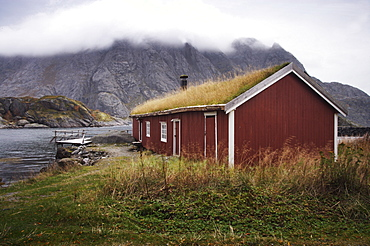 Rorbu (fisherman's hut) with grass roof by fjord, Lofoten Islands, Norway, Scandinavia, Europe