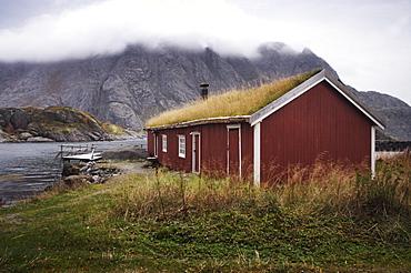 Rorbu (fisherman's hut) with grass roof by fjord, Lofoten Islands, Norway, Scandinavia, Europe