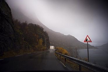 Lorry on wet road beside fjord, Norway, Scandinavia, Europe