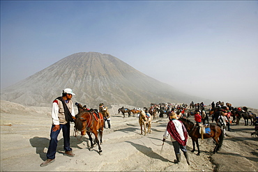 Horses and riders on the way to the top of the Bromo vulcano, with the small Batok volcano in the background, Tengger Caldera, Java, Indonesia, Southeast Asia, Asia