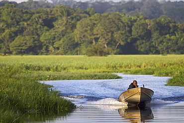 A fisherman in the everglades of Kaw, French Guiana, South America