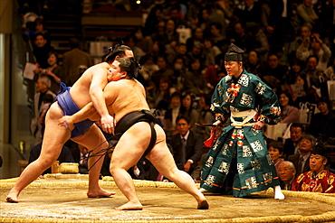 Two sumo wrestlers fighting at the Kokugikan stadium, Tokyo, Japan, Asia