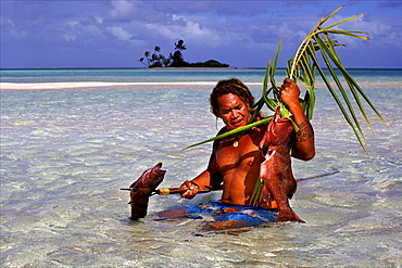 Fishing the traditional way with a harpoon, at the White Sands, Tetamanu Pass, Fakarava Island, Tuamotu archipelago, French Polynesia, Pacific