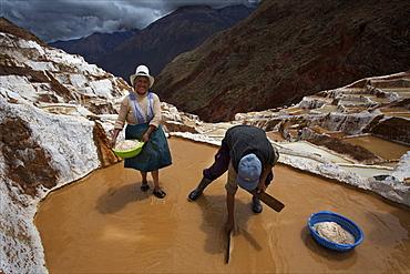 Family working in the Salinas de Maras, Sacred Valley, Peru, South America