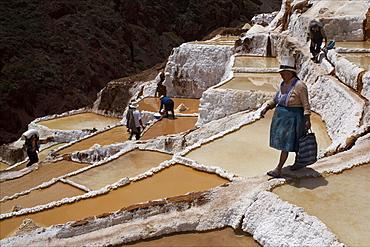 People working in the Salinas de Maras, Sacred Valley, Peru, South America