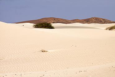 The Deserto de Viana in the center of the island, Boa Vista, Cape Verde Islands, Atlantic, Africa