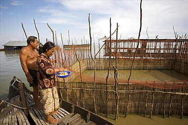 A small fish farm in the floating village of Kompong Phluk on Lake Tonle Sap, near Siem Reap, Cambodia, Indochina, Southeast Asia, Asia