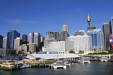View of the city from Darling Harbour, Sydney, New South Wales, Australia, Pacific