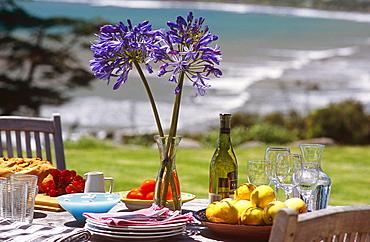 Ahu Ahu Eco Beach Villa, Oakura, Taranaki, New Zealand, Pacific