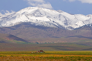 Lonely hut in the High Atlas, Morocco, North Africa, Africa