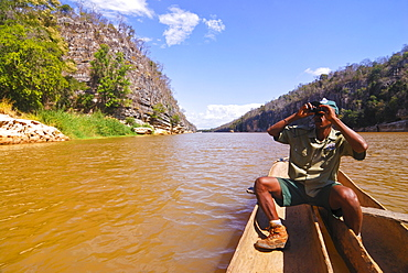 Guide looking out for birds on the Manambolo River, Tsingy de Bemaraha, Madagascar, Africa