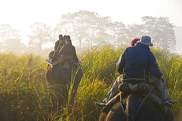 Tourists on elephants, Kaziranga National Park, UNESCO World Heritage Site, Assam, Northeast India, India, Asia