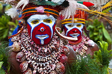 Colourfully dressed and face painted local tribes celebrating the traditional Sing Sing, Enga, Highlands of Papua New Guinea, Pacific
