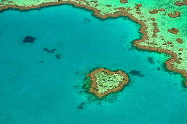 Aerial of the Great Barrier Reef, UNESCO World Heritage Site, Queensland, Australia, Pacific
