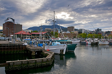 The harbour area of Hobart, Tasmania, Australia, Pacific