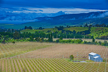 Little house in a agricultural field in Western Tasmania, Australia, Pacific