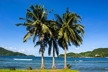 The Pago Pago harbour, Tutuila Island, American Samoa, South Pacific, Pacific