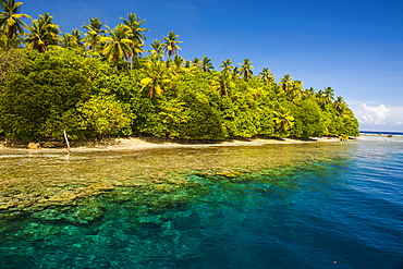 Crystal clear water and an islet in the Ant Atoll, Pohnpei, Micronesia, Pacific
