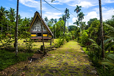 Oldest Bai of Palau, a house for the village chiefs, Island of Babeldoab, Palau, Central Pacific, Pacific