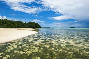 Sandy beach on Carp Island, Rock islands, Palau, Central Pacific, Pacific