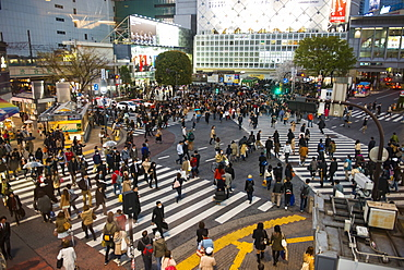 People crossing the busiest street crossing, Shibuya crossing, Tokyo, Japan, Asia