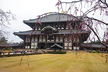 Todaiji Temple, UNESCO World Heritage Site, Nara, Kansai, Japan, Asia