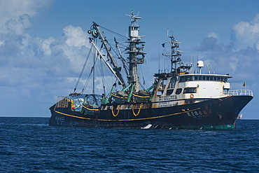 Chinese fishing trawler, Pohnpei (Ponape), Micronesia, Central Pacific, Pacific