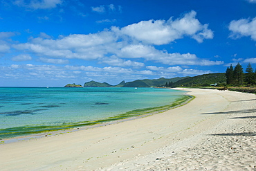 White sand beach, Lord Howe Island, UNESCO World Heritage Site, Australia, Tasman Sea, Pacific