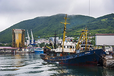 Fishing trawlers in the habour of Petropavlovsk-Kamchatsky, Kamchatka, Russia, Eurasia