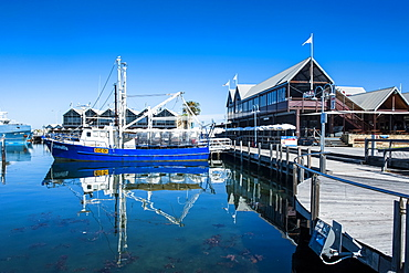 Fishing boat harbour of Fremantle, Western Australia, Australia, Pacific