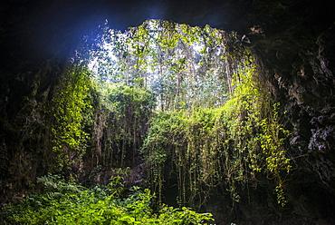 Cave system in the Virunga National Park, Rwanda, Africa