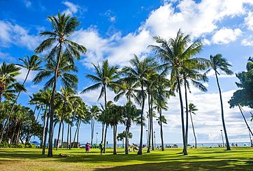 Waikiki Beach, Oahau, Hawaii, United States of America, Pacific