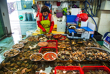 Fish for sale at the modern fish market in Busan, South Korea, Asia