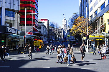 Downtown Auckland with high rise buildings, Auckland, North Island, New Zealand, Pacific