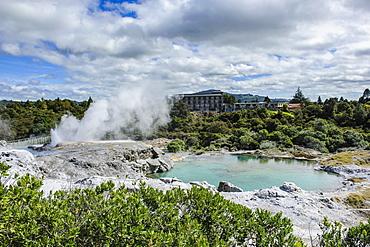 Geysirfield  in the Te Puia Maori Cultural Center, Rotorura, North Island, New Zealand, Pacific