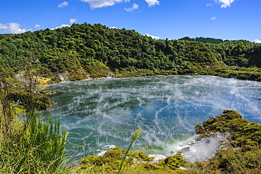 Frying Pan Lake,the largest hot spring in the world, Waimangu Volcanic Valley, North Island, New Zealand, Pacific