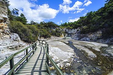 Geothermal volcanic area in the Wai-O-Tapu Thermal Wonderland, Waiotapu, North Island, New Zealand, Pacific