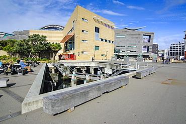 Te Papa, Museum of New Zealand, Wellington, North Island, New Zealand, Pacific