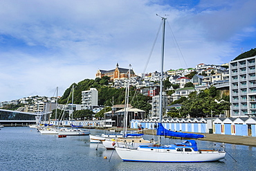 Little boats in the harbour of Wellington, North Island, New Zealand, Pacific