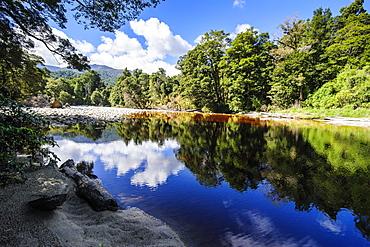 Trees reflecting in the water, Mirror Tarn, Oparara Basin, Karamea, West Coast, South Island, New Zealand, Pacific