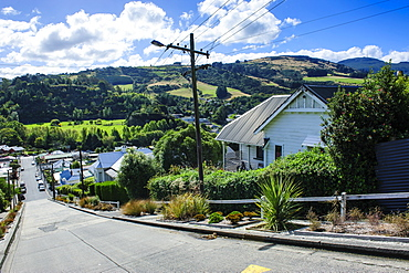 Baldwin Street, the world's steepest residential street, Dunedin, Otago, South Island, New Zealand, Pacific