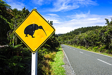 Kiwi warning sign along the road between Fox Glacier and Greymouth, South Island, New Zealand, Pacific